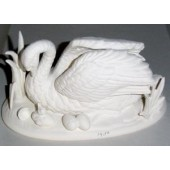 swan with hatchlings