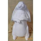 A Rabbit Named Doris