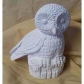 papa owl