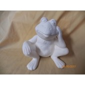 sitting and thinking frog