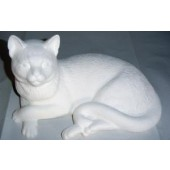 laying cat