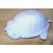 see no evil turtle