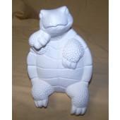 shelf sitting turtle